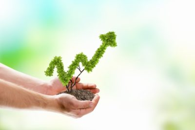 Alchemise Consulting Business Growth